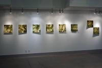 Salal installation shot Nanaimo Art Gallery